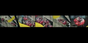 BE-XF-LK2-Roses-Neuenschwander_Pedro-0.jpg