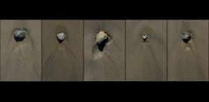 BE-XF-LK2-Stone_in_sand-Neuenschwander_Pedro-0.jpg
