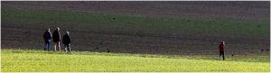 DI-P_1601_302208-Ueber_Land-Schaad_Daniel-OL.jpg