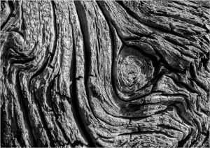 SW-F_1601_288307-Holzstruktur-Amstutz_Karl-LU.jpg