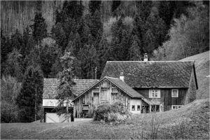 SW-F_1601_302710-Bauernhaus-Lippuner_Doris-SB.jpg
