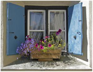 RH-FF-LK3-Blumenfenster-Bruno_Felix.jpg