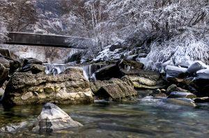 BR-FP-LK3-Winter-Haas_Karin.jpg
