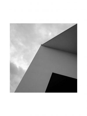 BS-SF-LK1-Eine_Taube_auf_dem_Dach-Voegtle_Peter.jpg