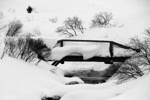 OL-SP-LK3-Pont_hivernal-Leemann_Claude.jpg