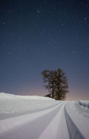 BR-FF-LK4-Night_Lines-Pfammatter_Matthias.jpg