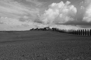 BS-SP-LK2-Toscana-Paulus_Alexander.jpg