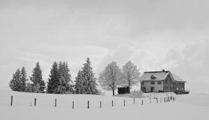 RH-DF-LK2-Schneelandschaft-Roth_Yvonne.jpg