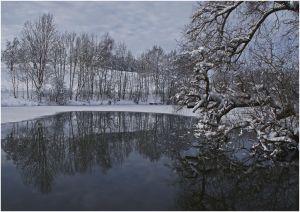 RH-FF-LK3-Weiher_im_Winter-Widmer_Juerg.jpg