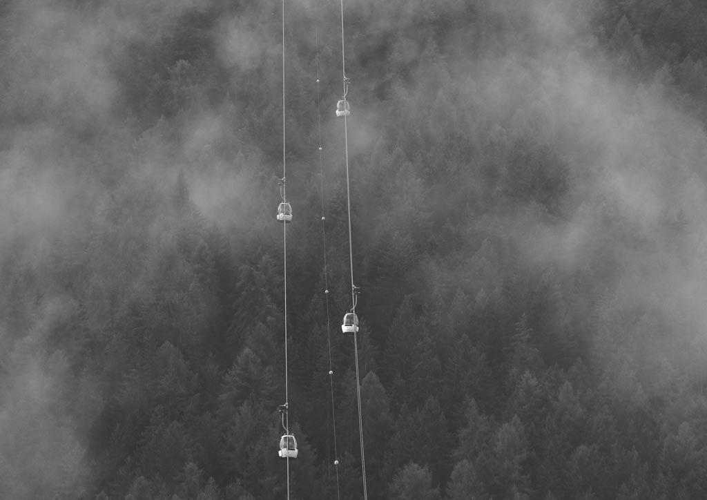 BE-SP-LK5-Durch_den_Nebel-Zurbruegg_Urs.jpg