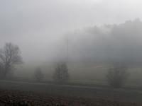 DI-F_1701_245202-Nebelstimmung-Arn_Ursula-BE
