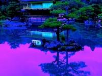 DI-P_1701_297905-Shogun_Palast-Hinojosa_Jose-BR