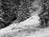 SW-F_1701_570610-Winterweg-Schibler_Judith-SB