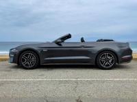 FB-F_1801_350305-Mustang-Seematter_Christian-BR