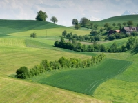 FB-P_1801_799910-Landschaft-Schibler_Judith-SB