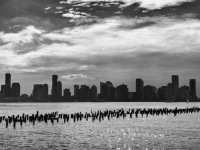 SW-F_1801_336301-Skyline-Eckard_Peter-BS