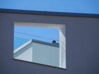 DI-P_1901_108602-Hausfassade-Pochop_Frank-BE