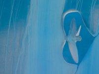 FB-P_1901_106110-blau_Battaglia_Robert-SB