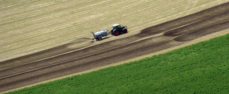 DI-P_2001_880102-Guellen-Neuenschwander_Peter-BE